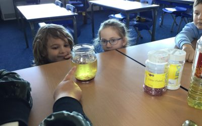 Read more about Science in Year 4!